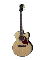 Gibson J-2000 Mystic Rosewood Antique Natural
