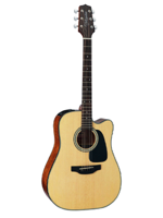 Takamine GD15CE Natural