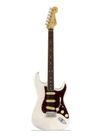 Fender LTD American Professional Stratocaster Channel-Bound White Blonde