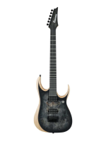 Ibanez RGDIX6PB Surreal Black Burst