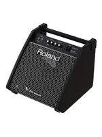 Roland PM100 - Personal Monitor